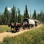 Teton Wagon Train - Western Wagon Adventure