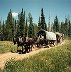 Teton Wagon Train - Western Wagon Adventure