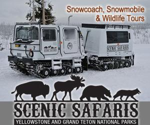 Scenic Safaris - Winter Safaris - SNowcoach and Snowmobile tours!