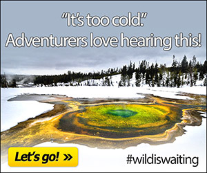 Wildland Trekking Company : Let our knowledgeable guides take you to Yellowstone's magnificent hidden jewels. From waterfalls and grand vistas, to wildlife and awe-inspiring geysers. Fully outfitted.