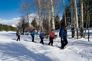 Snowshoe Yellowstone's Winter Wonderland :: Bundle up and explore the snowy wonderland of Yellowstone with a variety of winter activities. Hear the howl of a distant wolf or spot a slow-moving, frost-covered bison.