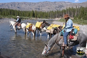 Yellowstone Outfitters - trail riding