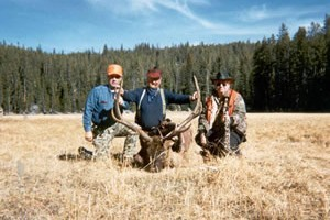 Beartooth Plateau Outfitters :: Utilizing legendary habitat in the rugged Beartooth Wilderness near Cooke City. Full-service, horseback pack-in elk hunts. Comfortable camps, gentle horses, top guides!