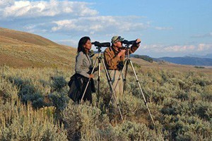Yellowstone Safari Company - year-round wildlife :: First-class, private tours inside Yellowstone Park. Experienced biologist-guides provide year-round once in a lifetime experiences for all ages. Celebrating 27 years.