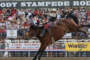 Buffalo Bill Cody Stampede Rodeo :: One of nine stops on the Million Dollar Gold Tour Series insuring the top cowboys from across the continent will be competing. Experience one of the best rodeos in the world!