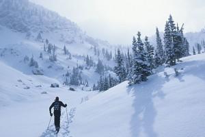 Wildland Trekking - lodging & X-C ski trips