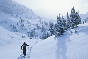 Wildland Trekking - lodging & ski/snowshoe :: Ski or snowshoe through land rich with natural and cultural history, geothermal activity, and wild beauty, then spend the nights in cozy, historic lodges in Yellowstone Park.