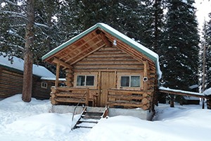 Pine Edge Cabins - wildlife headquarters :: Warm accommodations just minutes from Lamar Valley of Yellowstone. An ideal homebase for photographers, summer anglers, winter snowshoers and X-C skiers.
