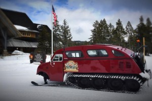 Yellowstone Alpen Guides Snowcoach Tours :: Individual and daily tours of Yellowstone in top quality historic snowcoaches to photograph wildlife and park scenery in winter. Kids = $110, seniors = $135, adults = $145.