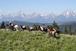 Teton Horseback Adventures :: Explore the West in a whole new way! Multi-Day guided pack trips into the Greater Teton and Yellowstone Wilderness. Choose from 3 - 5 nights at our overnight wilderness camps.