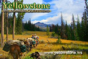 Yellowstone Wilderness Outfitters - park pack trip :: One of Yellowstone's best pack trip outfitters providing comfortable camps, fishing, wildlife viewing & delicious meals. A trip with us will be remembered forever.