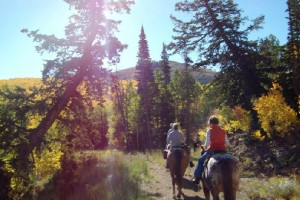 Creekside Trail Rides - 1 hour just $40