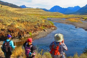 Yellowstone Hiking Guides - hikes kids love