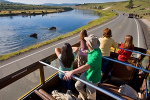 Yellowstone National Park Lodges - bus tours