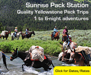 Sunrise Pack Station - Easy Pack Trips : Our pack trips re-trace the steps of some of Yellowstone's early pioneers, discovering geysers, waterfalls and rivers along the way. Bring appetites, curiosity & cameras. We offer an overnight '1 night