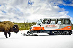 Snowmobile, Snowcoach & Lodge Packages : Providing exceptional adventures in Yellowstone, SeeYellowstone.com offers lodging choices, guided snowcoach or snowmobile tours, equipment rental and clothing.