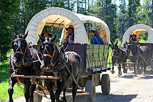 Teton Wagon Train & Horse Adventure