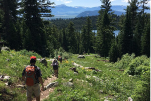 National Park HIKING TOURS | Timberline Adventures : Join us on our fully-supported, Inn-to-Inn cycling and hiking tours. Celebrating 30+ years committed to adventure.