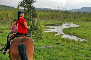 Wilderness Trails: Scenic Rides in Nat'l Forest