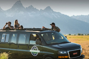 GO Yellowstone Pass - 15% Off Wildlife Tours