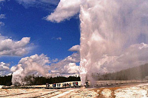 Discovery Yellowstone Tours - see Old Faithful