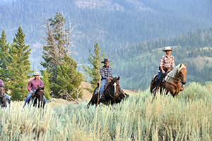 East Yellowstone Lodges & Guest Ranches