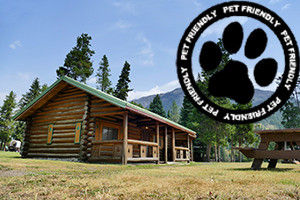 East Yellowstone Lodges: Pet Friendly
