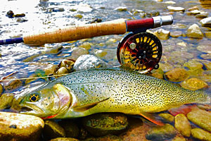 The Red Rock Ranch - Private Fly Fishing Lodge