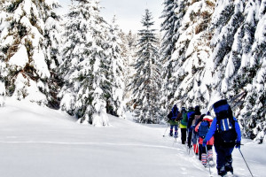 Flying Pig - Yellowstone snowshoe tours