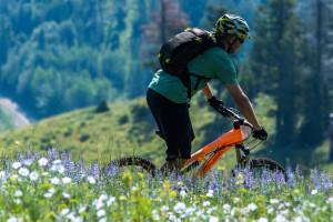 Flying Pig - Mountain Bike Biking Tours