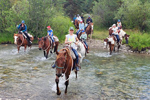 Spotted Horse Ranch - save 15% spring of 2020