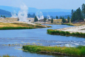 Yellowstone Alpen Guides - Summer Park Tours