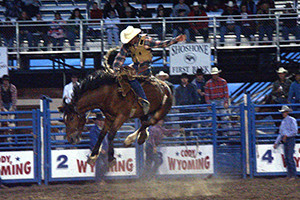 Cody Nite Rodeo - Fun for the whole family!