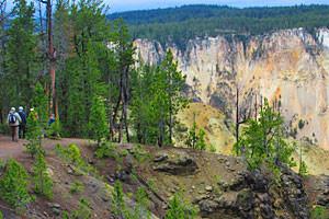 Yellowstone Hiking Guides - Canyon Rim hike
