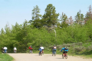 Bike Riding Rentals & Guided Tours - all ages