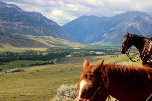 Yellowstone horseback riding | Double Diamond X