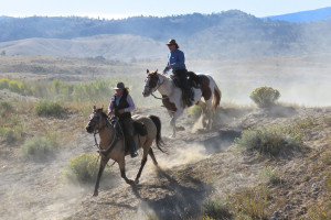 Guest ranches near Yellowstone | CM Ranch Dubois