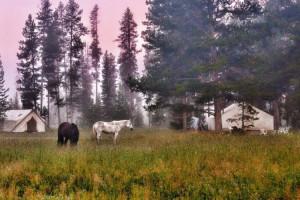 Bedroll & Breakfast - glamping, dining & horseback