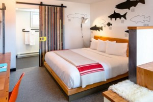 The LARK - Bozeman's new luxury hotel