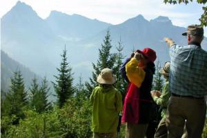 Adventure Yellowstone Year-Round Park Tours