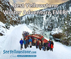 See Yellowstone Tours - The Best in Yellowstone