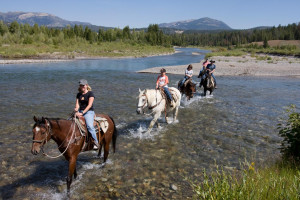 Yellowstone Outfitters - Horseback Riding Trips