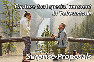 Wedding Proposal Photo Shoots - Remembered Forever