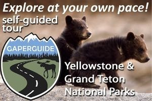 GaperGuide: GPS Self-Guided Yellowstone Tours