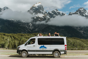 Wildlife Expeditions - Yellowstone Wildlife Tours