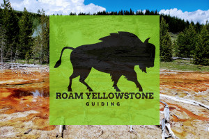 Roam Yellowstone Guided Hikes - Private & Custom