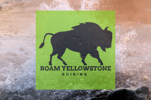 Roam Yellowstone SUV Tours - Private & Custom