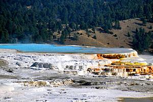 Roam Yellowstone Guiding - Mammoth Trips