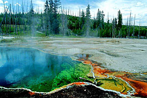 Yellowstone Scenic Tours | Come See Mammoth
