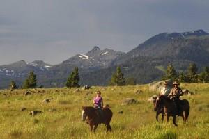 Flying Pig Horseback - trail rides in the Park